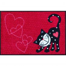 Schoonloopmat Romeo in Love