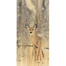 wandkraft Print op hout European wildlife-007